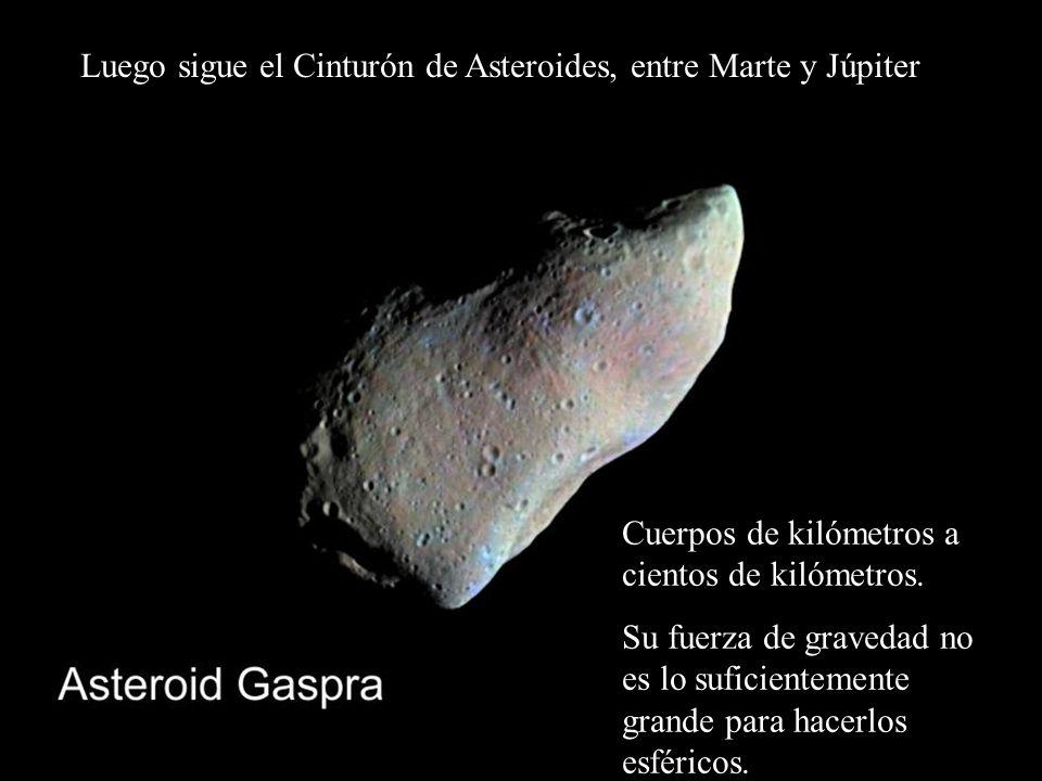 Luego sigue el Cinturón de Asteroides, entre Marte y Júpiter Cuerpos de kilómetros a cientos de kilómetros. Su fuerza de gravedad no es lo suficientem