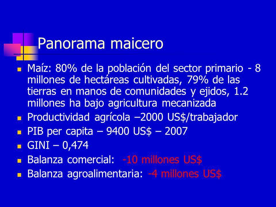 Panorama maicero Maíz: 80% de la población del sector primario - 8 millones de hectáreas cultivadas, 79% de las tierras en manos de comunidades y ejid