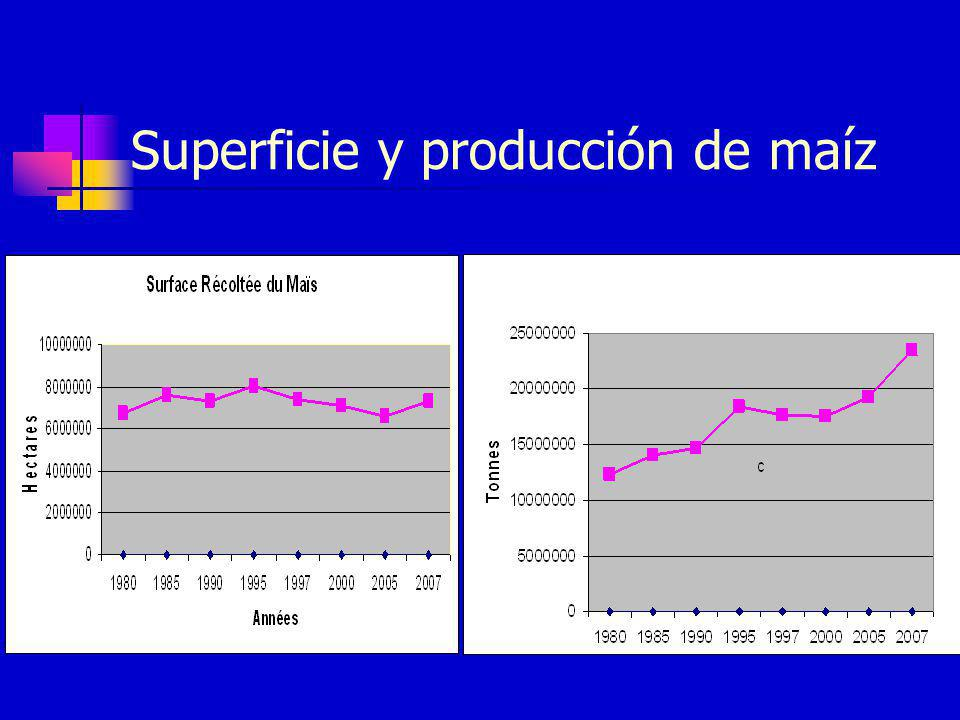Superficie y producción de maíz