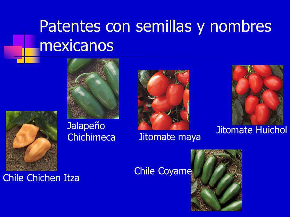 Jitomate Huichol Patentes con semillas y nombres mexicanos Jitomate maya Chile Chichen Itza Chile Coyame Jalapeño Chichimeca
