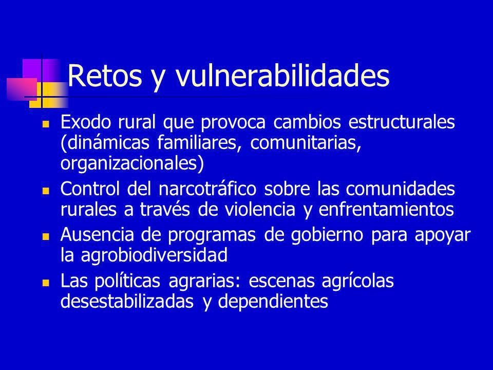 Retos y vulnerabilidades Exodo rural que provoca cambios estructurales (dinámicas familiares, comunitarias, organizacionales) Control del narcotráfico