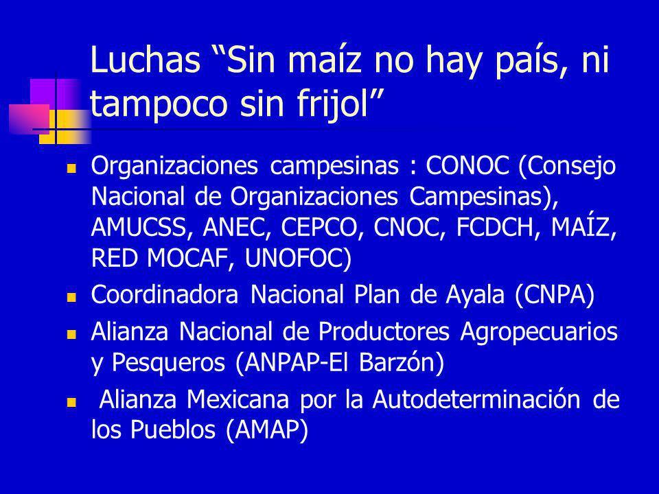 Luchas Sin maíz no hay país, ni tampoco sin frijol Organizaciones campesinas : CONOC (Consejo Nacional de Organizaciones Campesinas), AMUCSS, ANEC, CE