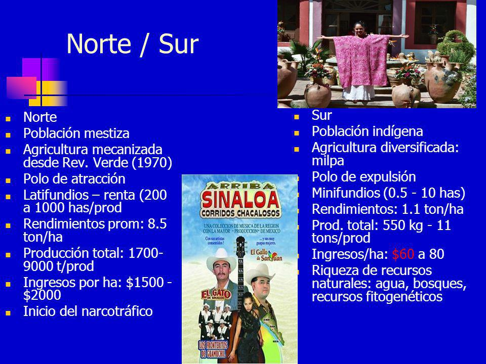 Norte / Sur Norte Población mestiza Agricultura mecanizada desde Rev. Verde (1970) Polo de atracción Latifundios – renta (200 a 1000 has/prod Rendimie