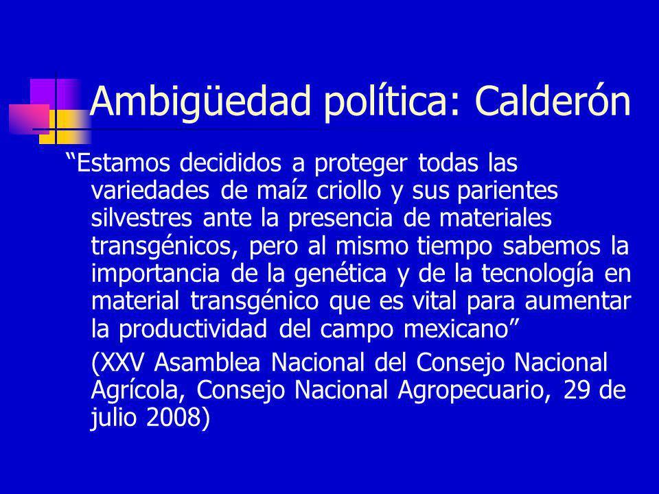 Ambigüedad política: Calderón Estamos decididos a proteger todas las variedades de maíz criollo y sus parientes silvestres ante la presencia de materi