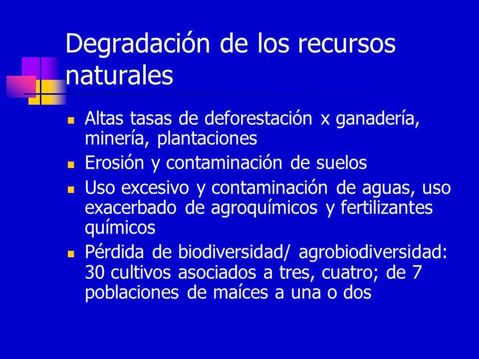 Degradación de los recursos naturales Altas tasas de deforestación x ganadería, minería, plantaciones Erosión y contaminación de suelos Uso excesivo y