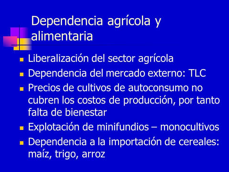 Dependencia agrícola y alimentaria Liberalización del sector agrícola Dependencia del mercado externo: TLC Precios de cultivos de autoconsumo no cubre