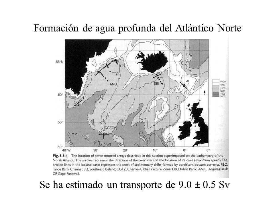 Se ha estimado un transporte de 9.0 ± 0.5 Sv