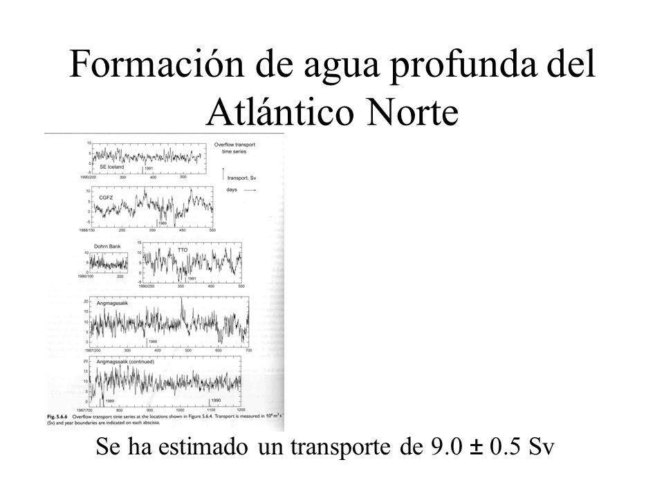 Formación de agua profunda del Atlántico Norte Se ha estimado un transporte de 9.0 ± 0.5 Sv