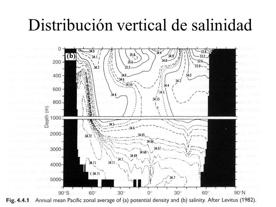Distribución vertical de salinidad