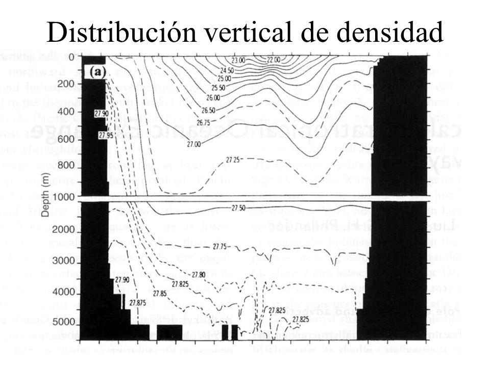 Distribución vertical de densidad