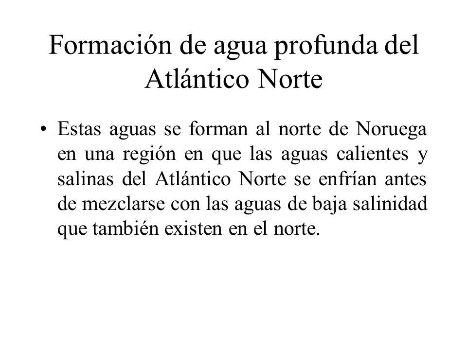 Formación de agua profunda del Atlántico Norte Estas aguas se forman al norte de Noruega en una región en que las aguas calientes y salinas del Atlánt