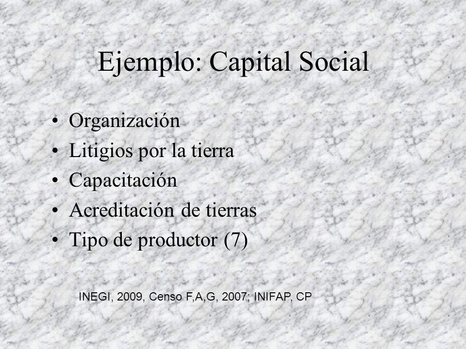 Ejemplo: Capital Social Organización Litigios por la tierra Capacitación Acreditación de tierras Tipo de productor (7) INEGI, 2009, Censo F,A,G, 2007; INIFAP, CP