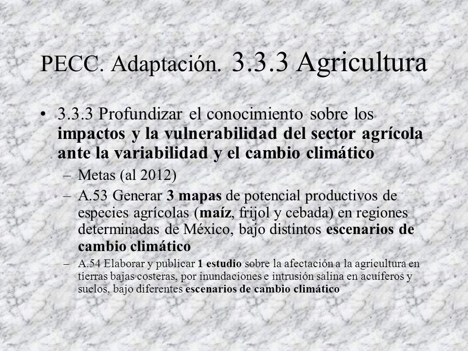 Productores de café ( Veracruz ) Se aplica el MPA Se generó modelo econométrico (forzantes climáticos y no-climáticos) Se trabaja para fundamentar servicios ambientales (secuestro de CO2, biodiversidad, suelos, agua, CLIMA..) (control biológico de plagas) Nestlé??