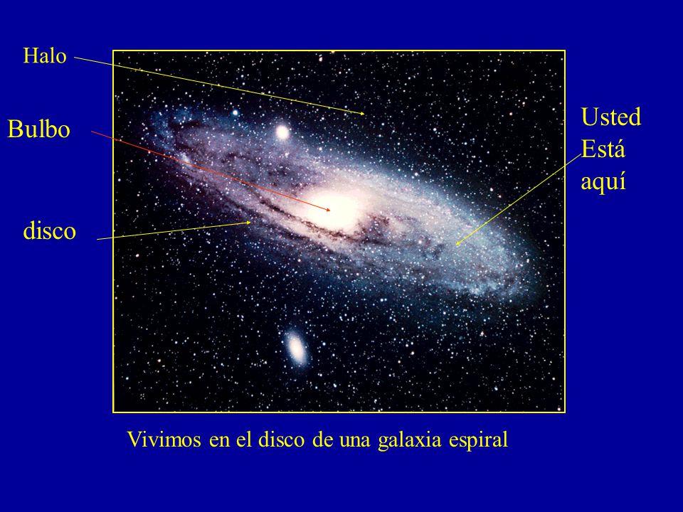 Vivimos en el disco de una galaxia espiral Halo Bulbo disco Usted Está aquí
