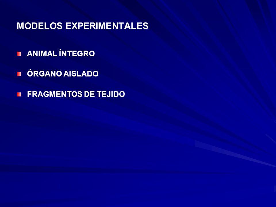MODELOS EXPERIMENTALES ANIMAL ÍNTEGRO ÓRGANO AISLADO FRAGMENTOS DE TEJIDO