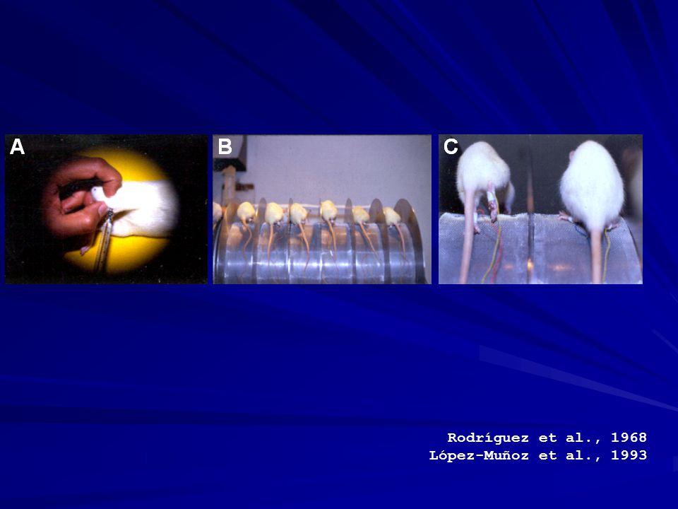 Rodríguez et al., 1968 López-Muñoz et al., 1993