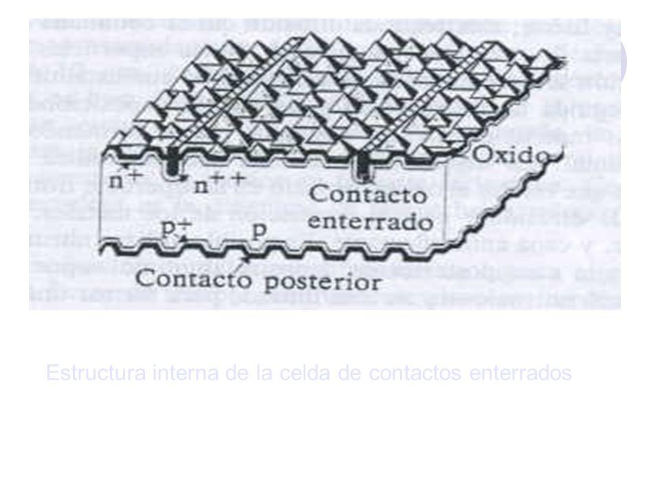 Estructura interna de la celda de contactos enterrados