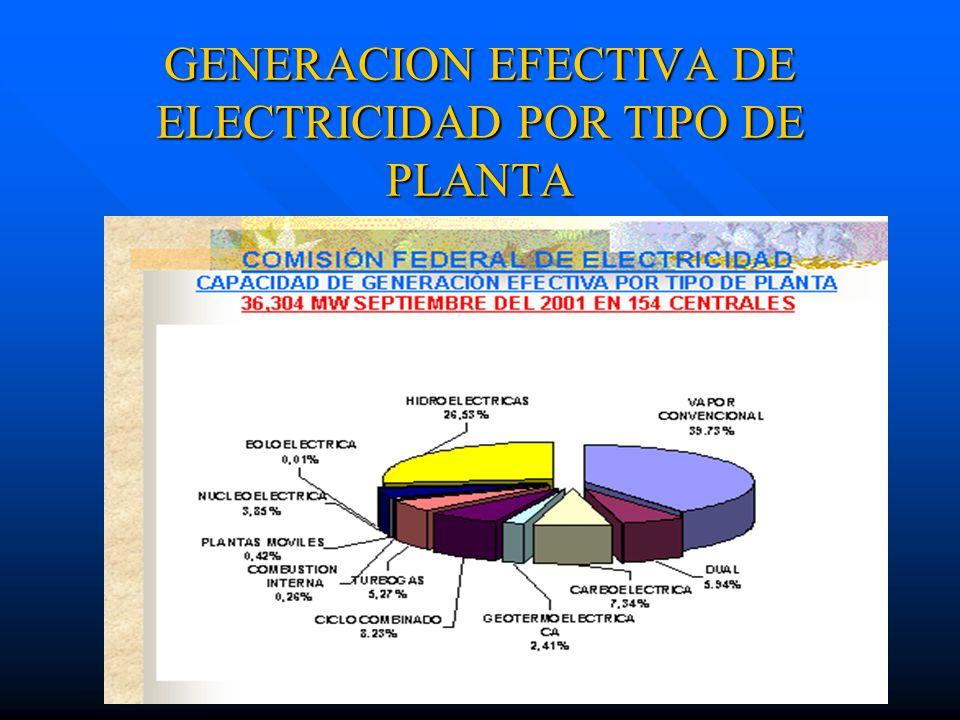 GENERACION EFECTIVA DE ELECTRICIDAD POR TIPO DE PLANTA