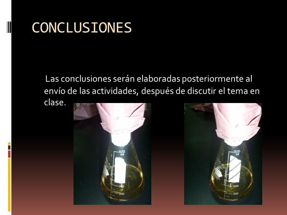 CONCLUSIONES Las conclusiones serán elaboradas posteriormente al envío de las actividades, después de discutir el tema en clase.