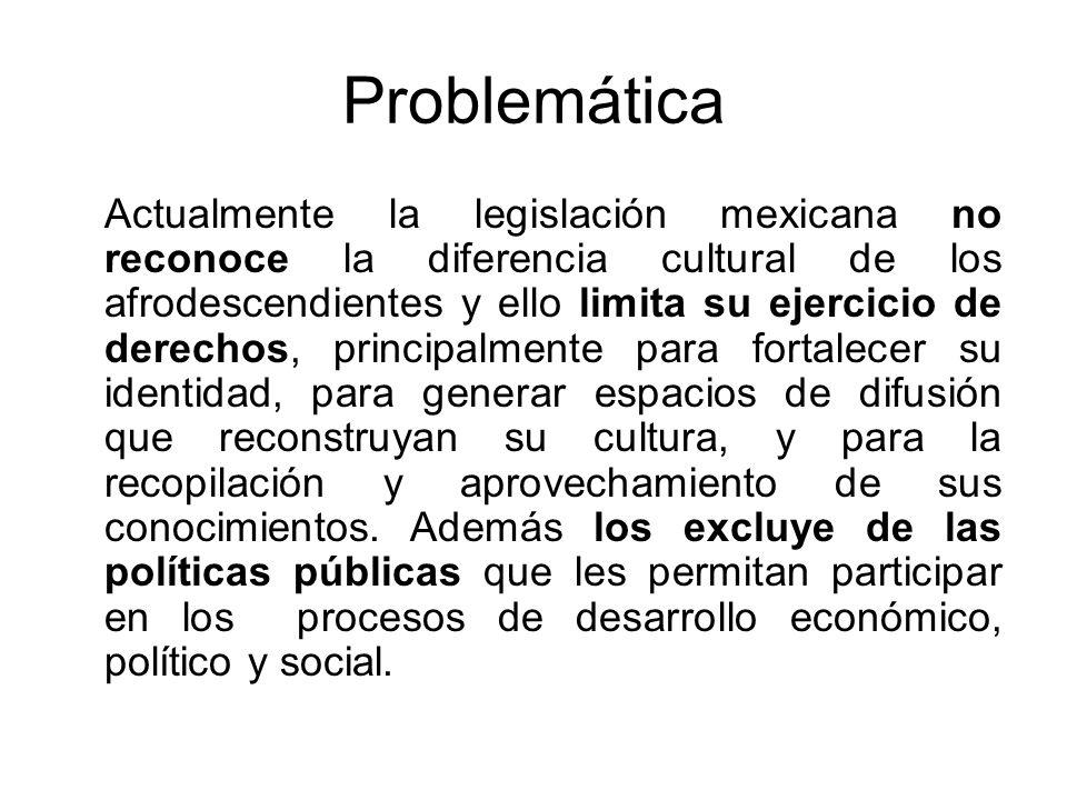 Problemática Actualmente la legislación mexicana no reconoce la diferencia cultural de los afrodescendientes y ello limita su ejercicio de derechos, p