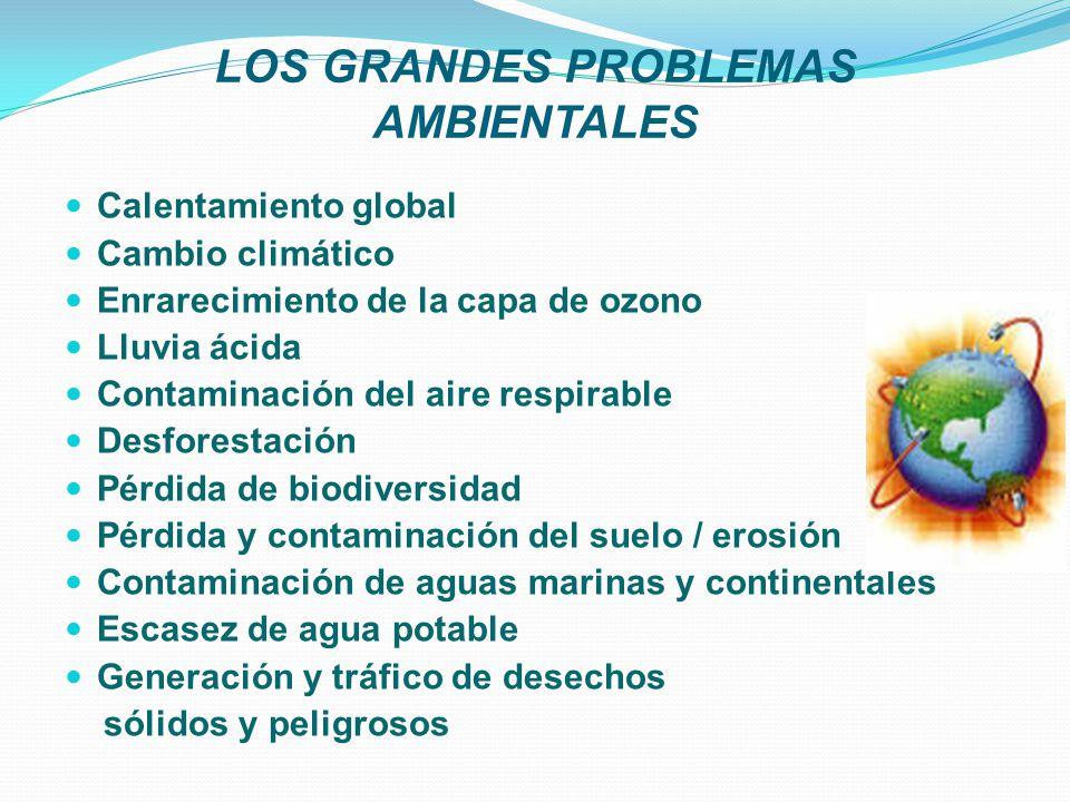 LOS GRANDES PROBLEMAS AMBIENTALES Calentamiento global Cambio climático Enrarecimiento de la capa de ozono Lluvia ácida Contaminación del aire respira