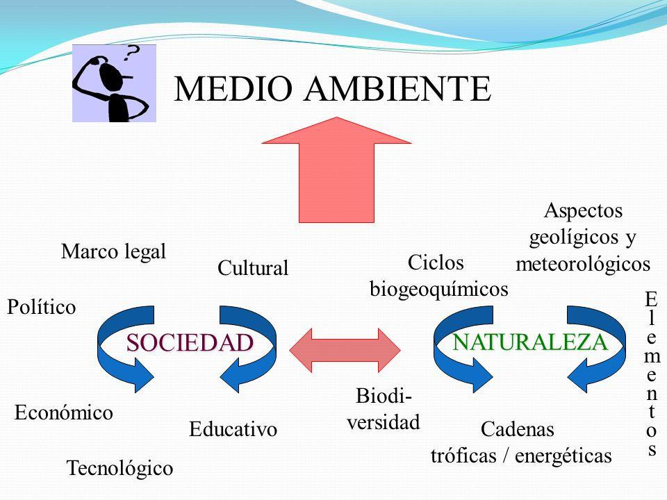 MEDIO AMBIENTE Marco legal Cultural Económico Político SOCIEDAD Educativo Aspectos geolígicos y meteorológicos Ciclos biogeoquímicos ElementosElemento