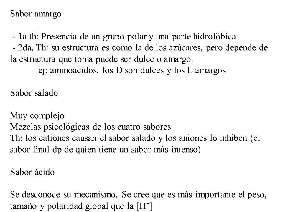 Sabor amargo.- 1a th: Presencia de un grupo polar y una parte hidrofóbica.- 2da.