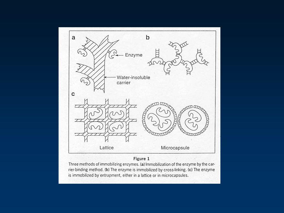 CLEC, Catalizador de penicilino acilasa penicilino acilasa Enzima inmovilizada (comercial) CLEC-PA Actividad específica ( mol/min/g) 200 15,000 ciclos
