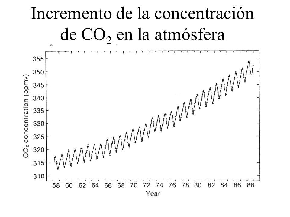 Incremento de la concentración de CO 2 en la atmósfera