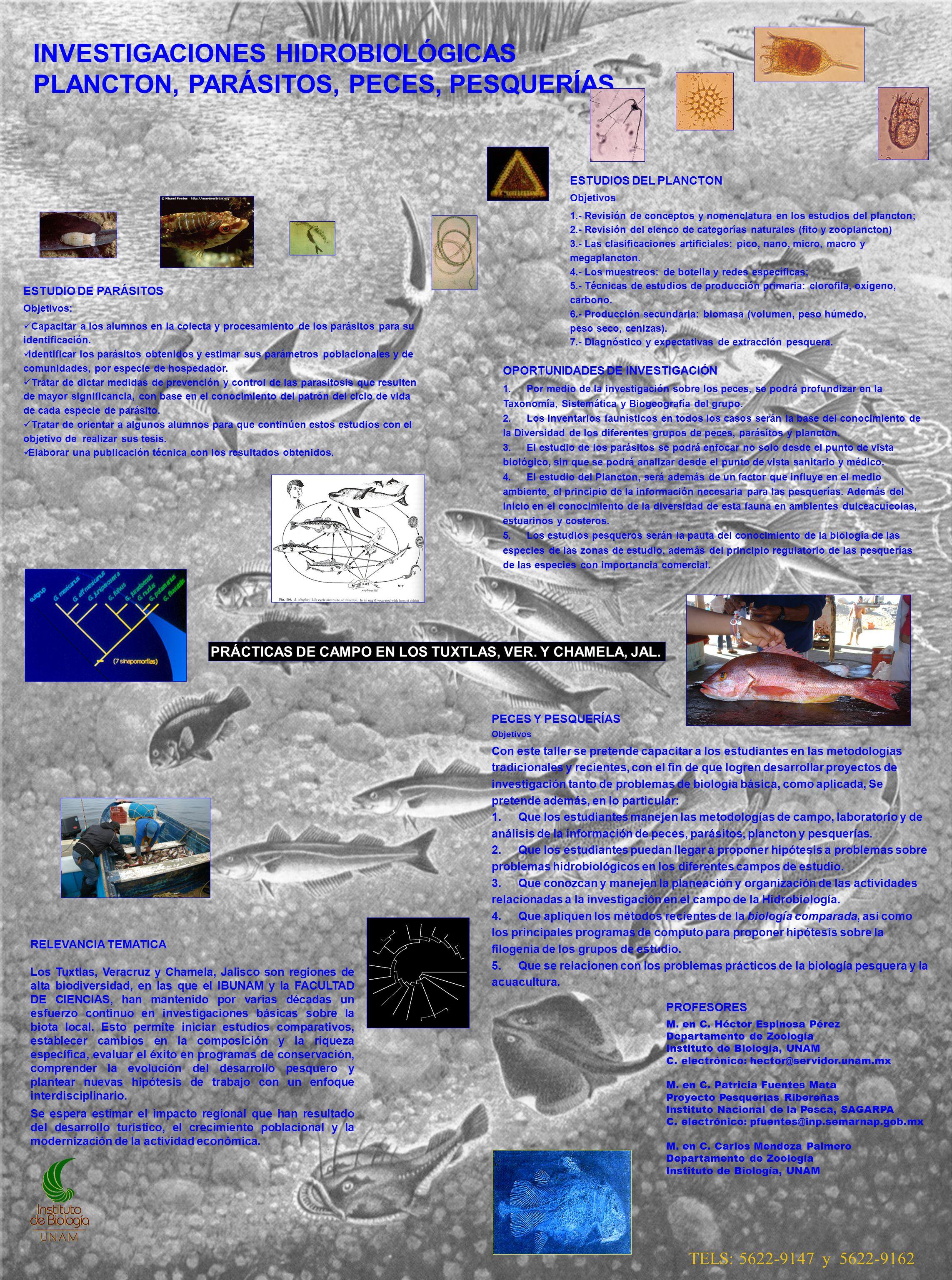 INVESTIGACIONES HIDROBIOLÓGICAS PLANCTON, PARÁSITOS, PECES, PESQUERÍAS. PROFESORES M. en C. Héctor Espinosa Pérez Departamento de Zoología Instituto d