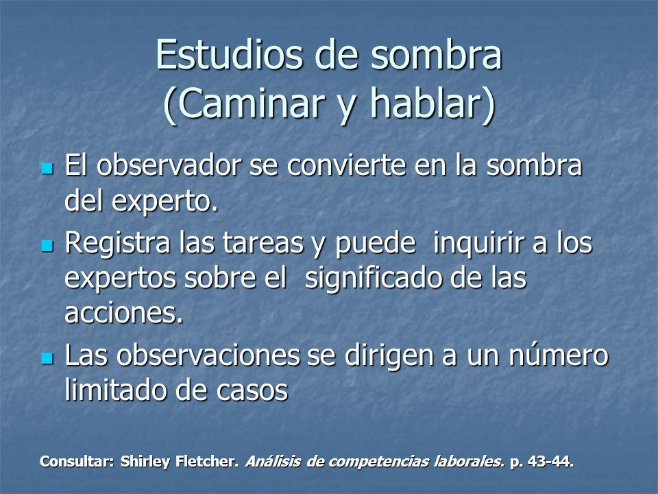 Estudios de sombra (Caminar y hablar) El observador se convierte en la sombra del experto.