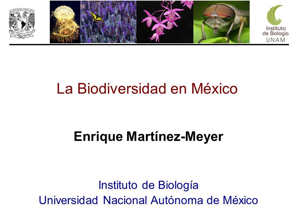 Enrique Martínez-Meyer Instituto de Biología Universidad Nacional Autónoma de México La Biodiversidad en México