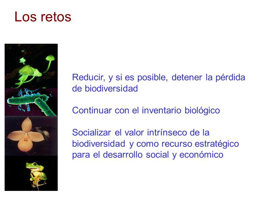 Los retos Reducir, y si es posible, detener la pérdida de biodiversidad Continuar con el inventario biológico Socializar el valor intrínseco de la bio