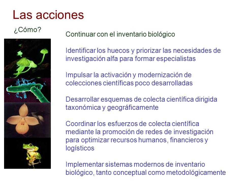Las acciones Continuar con el inventario biológico Identificar los huecos y priorizar las necesidades de investigación alfa para formar especialistas