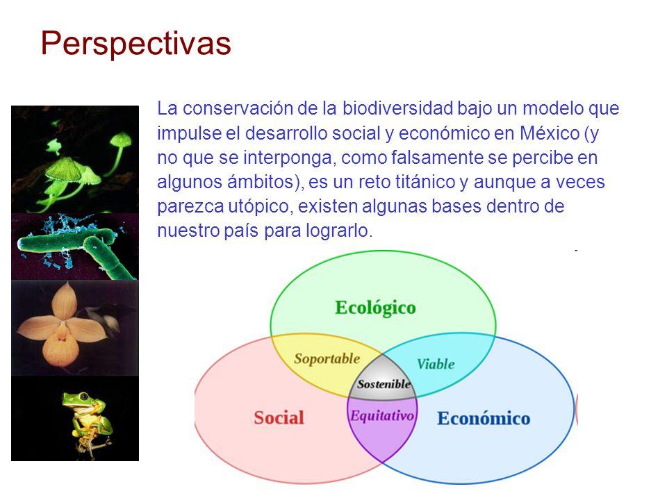 Perspectivas La conservación de la biodiversidad bajo un modelo que impulse el desarrollo social y económico en México (y no que se interponga, como f