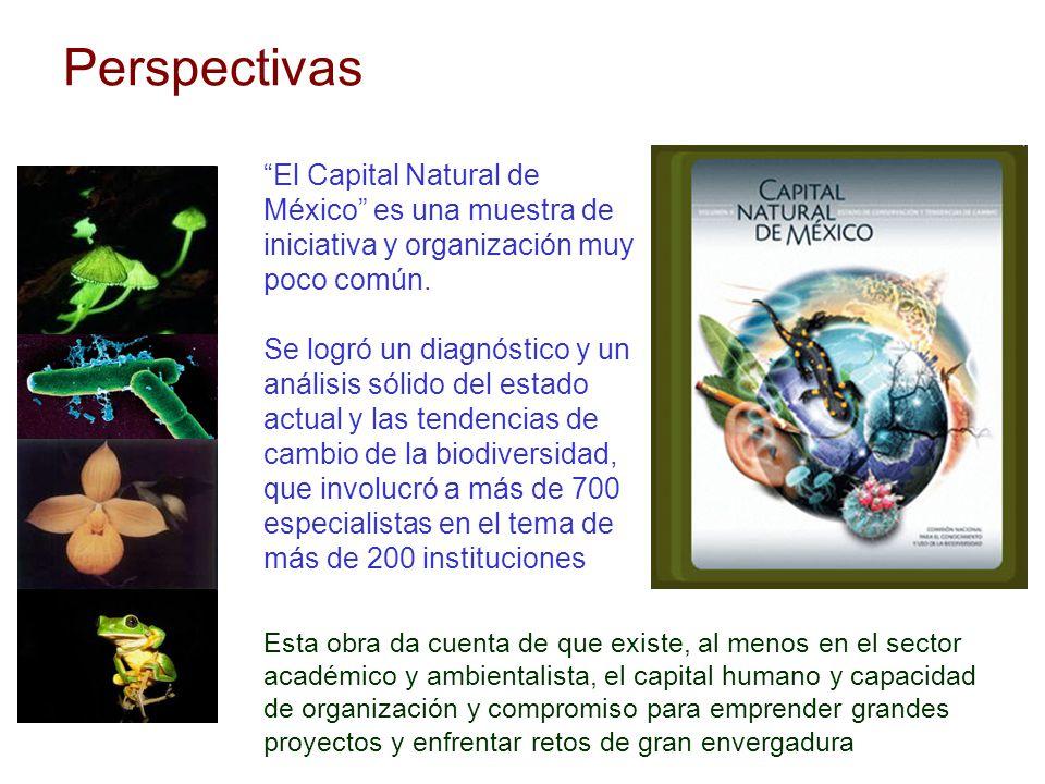 Perspectivas Esta obra da cuenta de que existe, al menos en el sector académico y ambientalista, el capital humano y capacidad de organización y compr