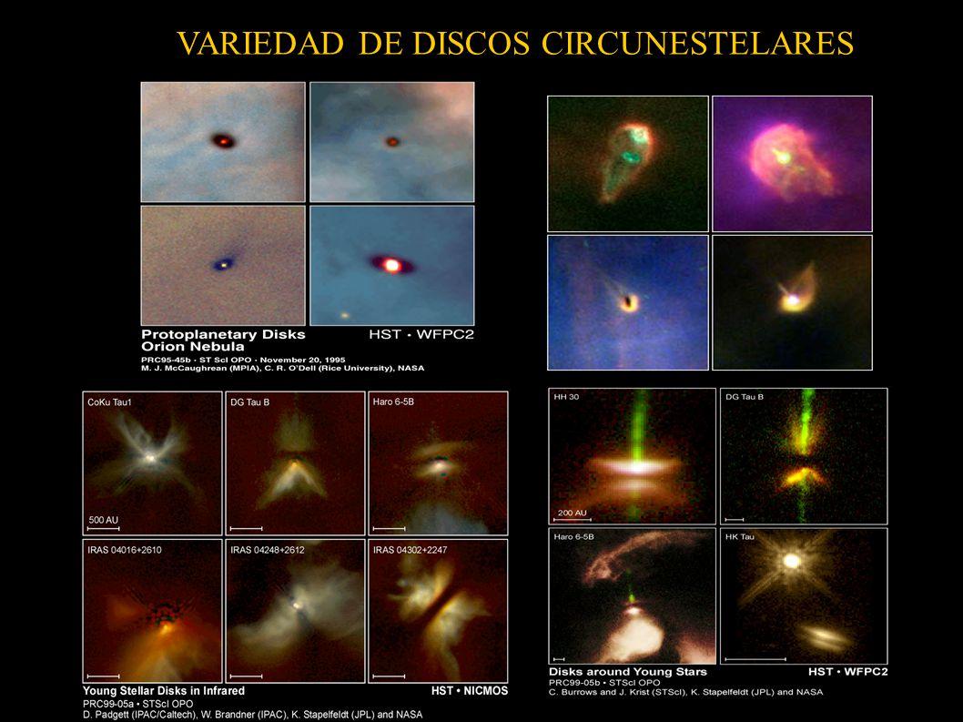 VARIEDAD DE DISCOS CIRCUNESTELARES
