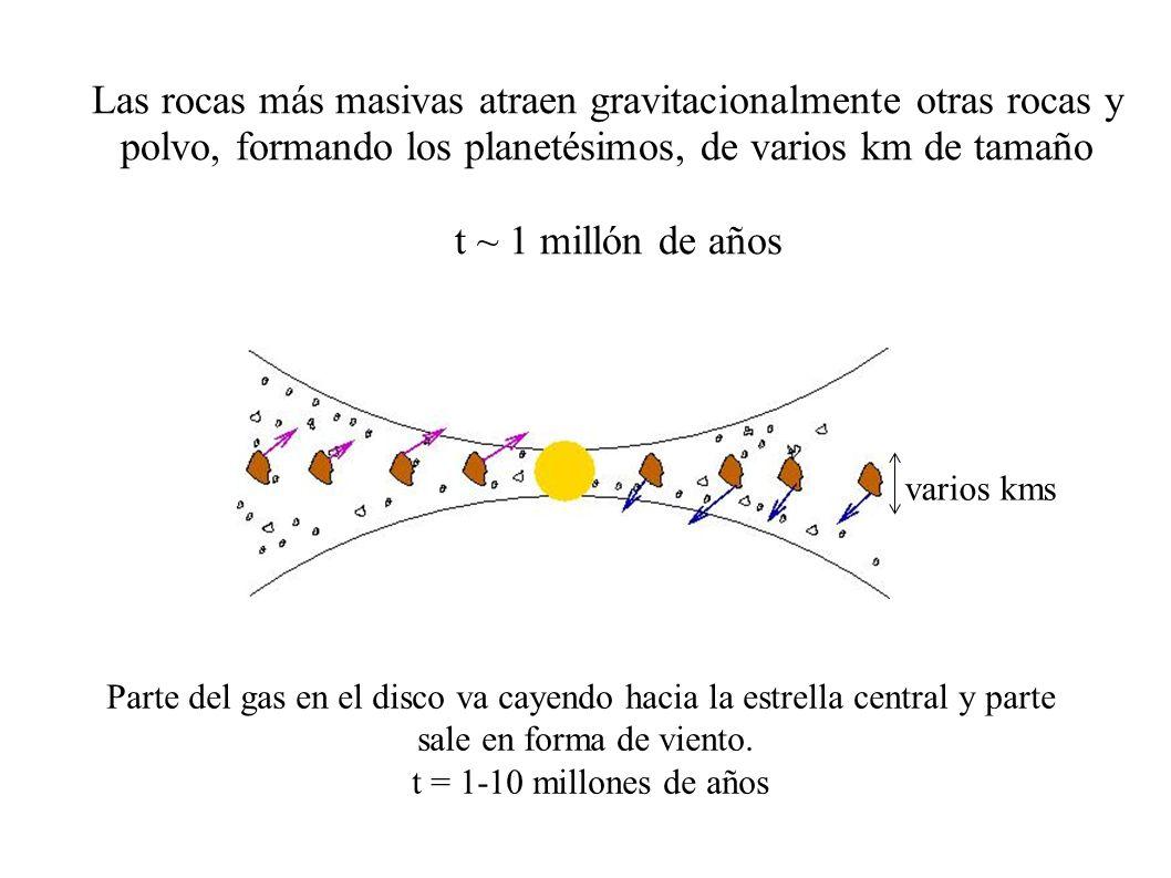 Las rocas más masivas atraen gravitacionalmente otras rocas y polvo, formando los planetésimos, de varios km de tamaño t ~ 1 millón de años Parte del