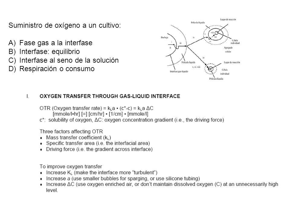Suministro de oxígeno a un cultivo: A)Fase gas a la interfase B)Interfase: equilibrio C)Interfase al seno de la solución D)Respiración o consumo