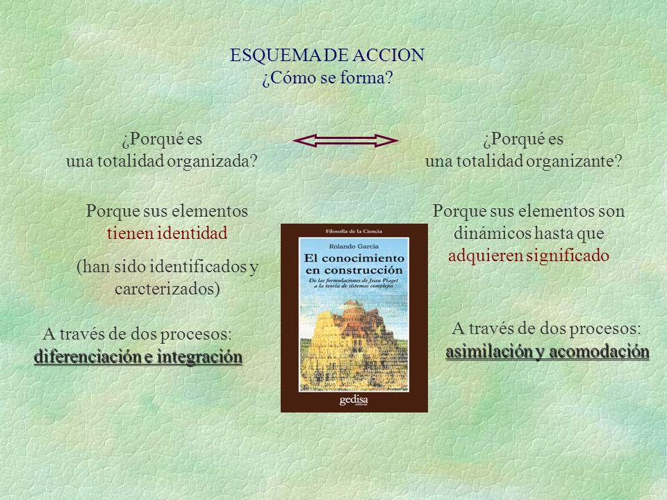 3. Procesos Funcionales 1 o Acción BÁSICOS crean para Esquema de acción es Conjunto de acciones Conocimiento (s) es Sujeto ante un objeto (relación in