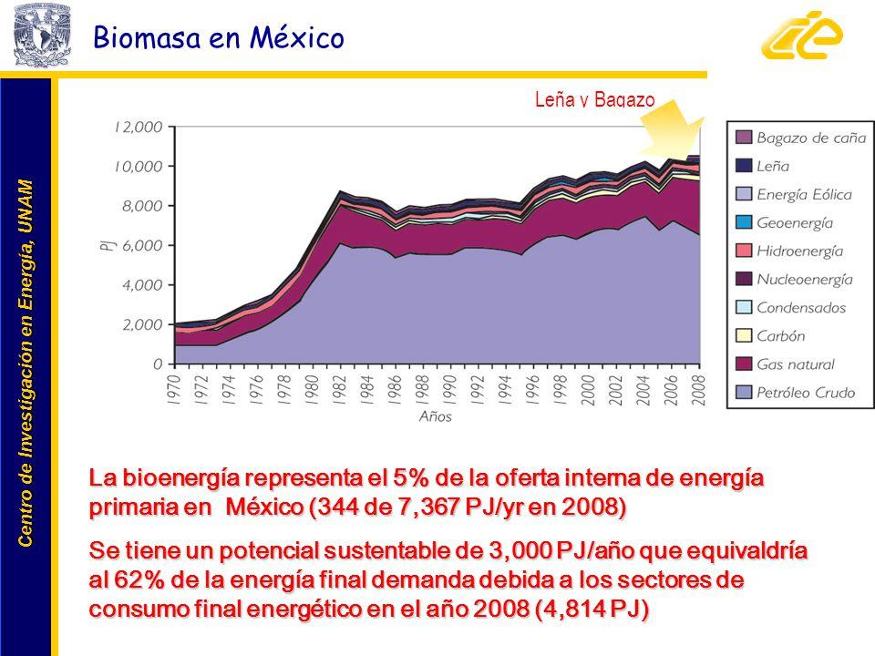 Centro de Investigación en Energía, UNAM Centro de Investigación en Energía, UNAM Biomasa en México Leña y Bagazo La bioenergía representa el 5% de la