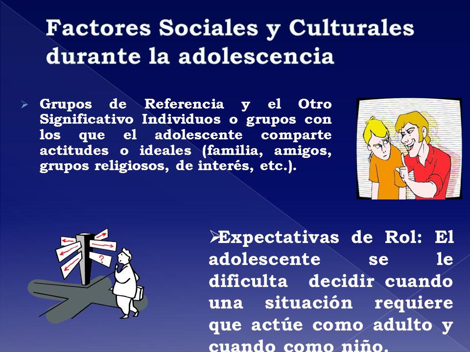 Grupos de Referencia y el Otro Significativo Individuos o grupos con los que el adolescente comparte actitudes o ideales (familia, amigos, grupos reli