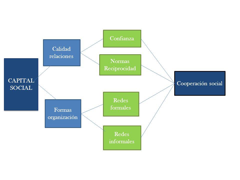CAPITAL SOCIAL Calidad relaciones Formas organización Confianza Redes formales Redes informales Normas Reciprocidad Cooperación social
