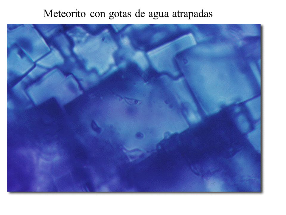 Meteorito con gotas de agua atrapadas