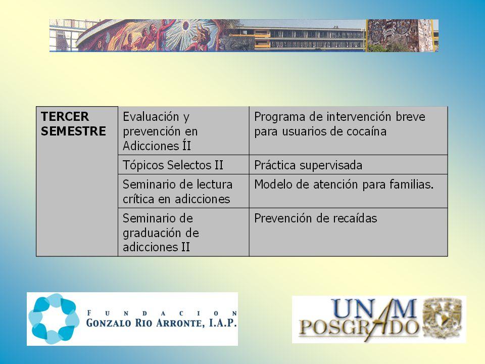 smchaine@servidor.unam.mx janigu@servidor.unam.mx