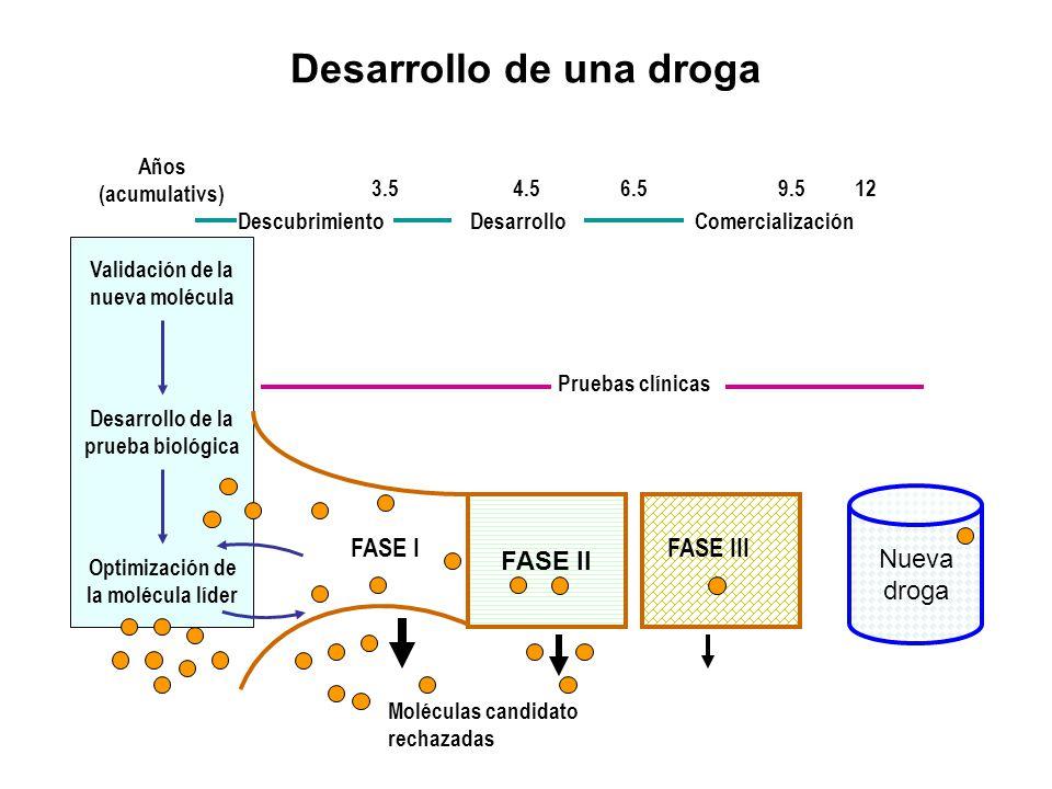Desarrollo de una droga Años (acumulativs) DescubrimientoDesarrolloComercialización 3.54.56.59.512 Validación de la nueva molécula Desarrollo de la pr