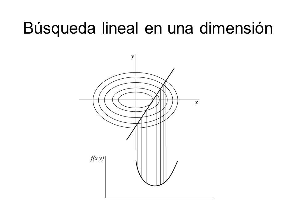 Búsqueda lineal en una dimensión