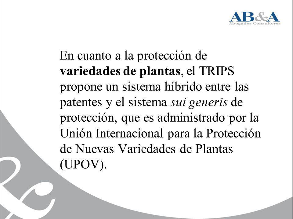 En cuanto a la protección de variedades de plantas, el TRIPS propone un sistema híbrido entre las patentes y el sistema sui generis de protección, que