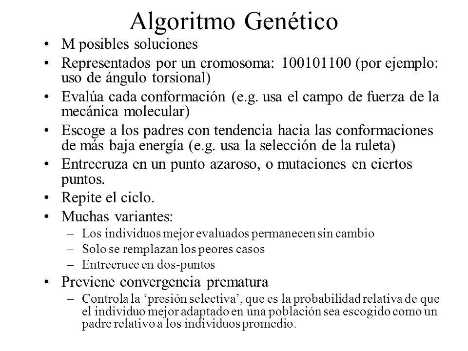 Algoritmo Genético M posibles soluciones Representados por un cromosoma: 100101100 (por ejemplo: uso de ángulo torsional) Evalúa cada conformación (e.