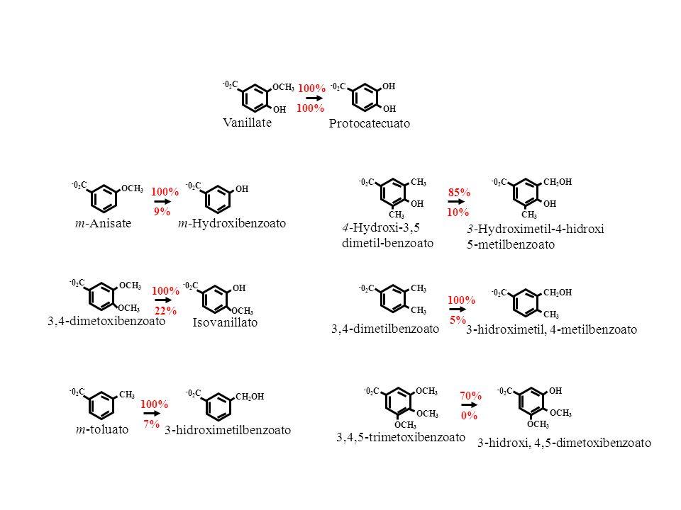 -02C-02C OH OCH 3 100% Vanillate OH -02C-02C Protocatecuato m-Hydroxibenzoato OCH 3 -02C-02C m-Anisate OH -02C-02C 100% 9% CH 3 -02C-02C OH CH 3 4-Hyd